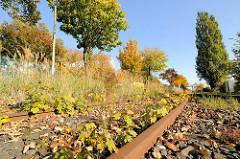 Eisenbahn, stillgelegte Gleisanlage / Eisenbahnschienen in der Borsigstraße im Hamburger Stadtteil Billbrook.