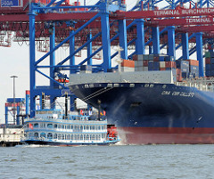 Containerriesen CALLISTO am HHLA Terminal Burchardkai. Ein Raddampfer auf Hafenrundfahrt vor dem Schiffsbug. Das 2010 fertiggestellte Containerschiff Calisto hat eine Länge von 364m und eine Breite von 45,6m. Der Containerriese kann 11 356 TEU Standa
