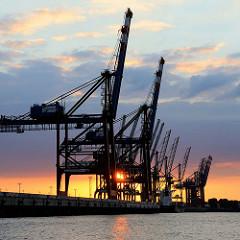 Abendsonne / Sonnenuntergang hinter Containerbrücken im Hafen Hamburgs - Hafenbecken Walteshofer Hafen.