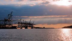 Sonnenuntergang im Hamburger Hafen - Frachter im Abendlicht am Terminal Burchardkai.