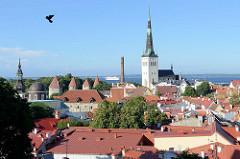 Panorama der Altstadt von Tallinn - Blick vom Domberg auf die Dächer der historischen Innenstadt; Stadtbefestigung / Wehrtürme der Unterstadt in Tallinn; re. der Kirchturm der St. Olafkirche / Olaikirche, Neuaufbau 1834.