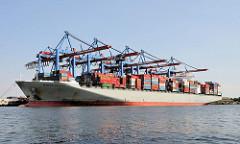 Bilder von Containerschiffen im Hamburger Hafen. Der 46m breite und 336m lange Frachter Human Bridge liegt unter den Containerbrückendes HHLA Terminals Burchardkai.