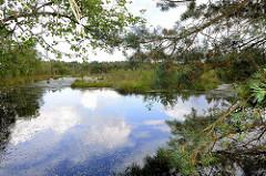 Pietzmoor im Naturschutzgebiet Lüneburger Heide bei Schneverdingen - mit Wasser gefüllter Torfstich.