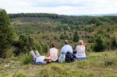 Aussicht am Totengrund in der Lüneburger Heide - ca. 30 ha großer Talkessel, Bestand mit Heidekraut und Wacholderbüschen. Neben dem Wilseder Berg zählt der Totengrund zu den bekanntesten Landschaftsstellen der Lüneburger Heide.