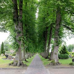 Lindenallee - Friedhofsweg in Aurich;