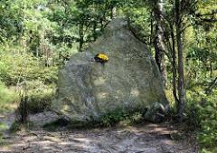 Gedenkstein Hermann Löns - Heimatdichter / Heidedichter - in der Lüneburger Heide bei Barrl, vormals ein Privatgrundstück des Gauleiters. Kurzzeitig von der SA 1934 - 1935 genutzte Grabstätte für Hermann Löns.
