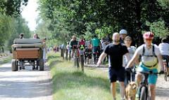 Hauptweg mit Fahrgast-Kutschen in der Lüneburger Heide bei Wilsede - Straßenverkehr im Naturschutzgebiet.