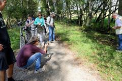 Eine Kreuzotter wird am Wegesrand entdeckt - Pietzmoor, Naturschutzgebiet Lüneburger Heide.