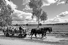 Kutschfahrt durcht die Lüneburger Heide - Pferdekutsche Nähe Undeloh.