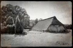 Alter Schafstall in der Lüneburger Heide bei Wilsede - mit Reet gedecktes landwirtschaftliches Gebäude, großes Doppeltor - Wacholderbüsche.