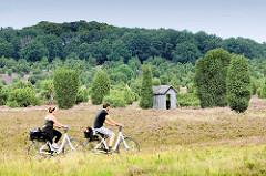 Radtour durch die Lüneburger Heide bei Wilsede; Radfahrt durch den Totengrund - blühendes Heidekraut und Wacholderbüsche, alte Holzhütte.