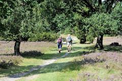 Wanderweg durch die Lüneburger Heide bei Wilsede - Nordic Walking während der Blütezeit des Heidekrauts - Bäume am Weg spenden Schatten.