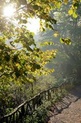 Holzgeländer, Fußweg im Park an der Ilm von Weimar; der 58 Hektar große Landschaftspark entstand  n der Zeit von 1778 bis 1828.