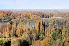 Herbststimmung in Bad Segeberg - hohe Bäume mit Herbstlaub um den großen Segeberger See.