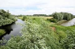 Entwässerungsgraben hinter dem Deich bei der Hetlinger Schanze, Weidenbäume im Wind.