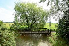 Holzbrücke über einen Entwässerungsgraben in Hetlingen, Kreis Pinneberg; Weide am Ufer.