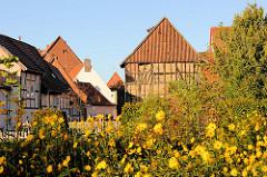 Historische Fachwerkgebäude, Fachwerkspeicher - blühende Herbstblumen; Bilder aus Duderstadt.