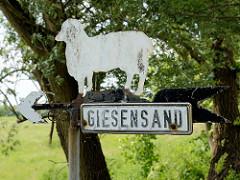 Hinweisschild Giesensand mit Pfeil und Schaf -  Hetlingen-Giesensand   ist ein mit Gräben und Grüppen durchzogenes 154 ha großes Marschgrünland, das als Weide, Mähweide und Wiese intensiv genutzt wird.