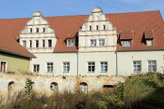 Alte Mauer / Hausruine mit Fensteröffnungen, dichter Bewuchs mit Wildkraut - im Hintergrund ein Wohnhaus mit Dachgiebeln am Othmarsweg in Naumburg.