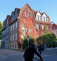 Mit wildem Wein bewachsene Hausfassade im Herbst - Bilder aus Duderstadt.