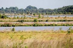 Naturschutzgebiet Teufelsmoor, ehemaliger Torfabbau - wieder vernässt, Abbauflächen mit Wasser gefüllt.