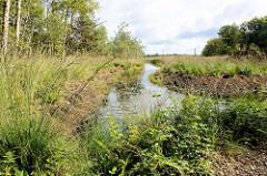 Wasserlauf / Graben im Naturschutzgebiet Teufelsmoor bei Worpswede.