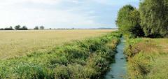 Weites flaches Land - Blick über eine Wiese im Teufelsmoor bei Worpswede; re. ein Entwässerungsgraben mit Bäumen am Ufer.
