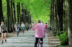 Promenade in Münster - ehem. Befestigungsring der Stadt; Baumallee. Rundweg für Spaziergänger, Fahrradfahrer und Skater.