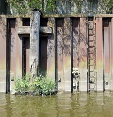 Verwitterter Streichbalken aus Holz an einer stillgelegten Kaianlage im Hamburger Hafen; Wildkraut wächst aus dem alten Holz der Balken - ein sogen. Streichbalken schützt die Kaianlage vor direkten Kontakt mit Schiffswänden. In der Spundwand eing