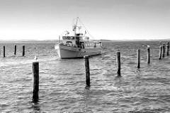 Fahrgastschiff Sturmvogel II am Hafen von Timmendorf auf der Insel Poel in Mecklenburg Vorpommern.