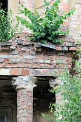 Verfallene Villa mit einem  säulengestützten Balkon im Buschmühlenweg von Frankfurt/Oder. Die Fensterscheiben sind zerbrochen, der Putz abgebröckelt - Birken / junge Bäume wachsen in den Mauerritzen.