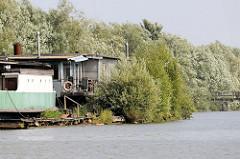 Alte Hausboote am Spandauer Ufer im Hamburger Spreehafen; auf dem Holzsteg / Ponton wachsen wilde junge Bäume.