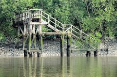 Alte stillgelegte Holztreppe / Wassertreppen im Moldauhafen, Hamburg Kleiner Grasbrook. Das Niedrigwasser hat die Holzkonstruktion der Anlage freigelegt - das Ufer ist mit dichtem Gebüsch und Bäumen bewachsen.