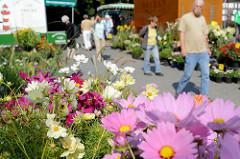 Blumenstand auf dem Wochenmarkt in Hamburg Volksdorf.
