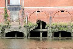 Aussenmauer eines Lagerhauses am Saalehafen im Hamburger Stadtteil Grasbrook - die Ziegelmauer ist teilweise zerbrochen - Wildkraut wächst in den Mauerritzen.