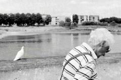 Eine Spaziergängerin  geht an der Uferpromenade der Oder bei Frankfurt, eine weiße Taube sitzt auf der Mauer; am anderen Flussufer Wohngebäude von Słubice.