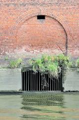 Fundament vom Lagerhaus G im Saalehafen im Hamburger Stadtteil Kleiner Grasbrook - der Durchlass ist vergittert, Wildkraut spriesst aus den Mauerfugen.