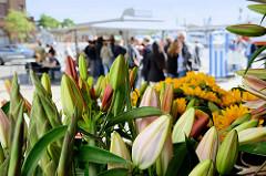Wochenmarkt aauf dem Gelände vom Altonaer Fischmarkt iim Hamburger Stadtteil Altona Altstadt; Knospen Lilien an einen Blumenstand, im Hintergrund MarktbesucherInnen.