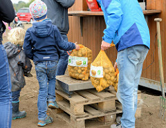Kartoffelfest auf Gut Wulksfelde in Tangstedt / Duvenstedt; auf dem Kartoffelfeld können die Besucher die Kartoffeln selber ernten. In Säcke gefüllt wird die Ernte gewogen und per Kilo bezahlt.
