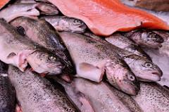 Fischstand mit frischen Fischen auf dem Wochenmarkt in Hamburg Sasel.