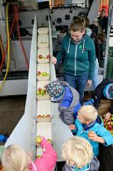 Eine mobile Apfelsaft Pressmaschine / Mosterei wird auf dem Apfel- und Kartoffelfest  vom Gut Wulksfelde den Besuchern vorgeführt; Kinder können die Äpfel auf ein Förderband legen.