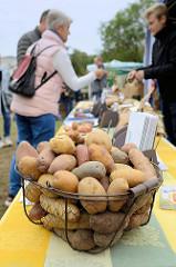 Infostand über unterschiedliche Kartoffelsorten auf dem Kartoffelmarkt Gut Wulksfelde.