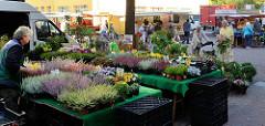 Marktstand mit Pflanzen und Blumen  auf dem Wochenmarkt in Hamburg Eidelstedt.