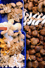 Gemüsestand mit sortierten Pilzen  auf dem Wochenmarkt in der Möllner Landstraße in Hamburg Billstedt.