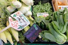 Wochenmarkt in Hamburg Rahlstedt, Gemüsestand mit Vierländer Zuckermais und Pacchoi.