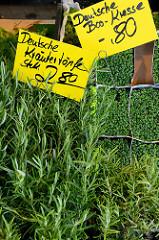 Wochenmarkt im Hamburger Stadtteil Groß Flottbek / Osdorfer Landstraße - Marktstand mit  Kräutern / Bio Kresse.