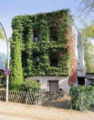 Wohnhaus mit Efeu bewachsene Fassade in der Seestraße von Hamburg Groß Flottbek.