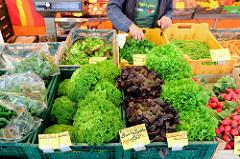 Wochenmarkt im Hamburger Stadtteil Rahlstedt, Rahlstedter Bahnhofstraße; Gemüsestand mit unterschiedlichen Salatssorten aus eigener Ernte.