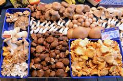 Gemüsestand mit sortierten frischen Pilzen auf dem Wochenmarkt in der Möllner Landstraße im Hamburger Stadtteil Billstedt.