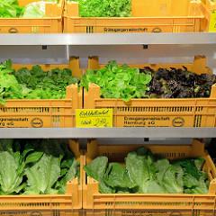 Gemüsestand mit frischem Salat - Eichblattsalat -  auf dem Wochenmarkt in der Wedeler Landstraße in Hamburg Rissen.